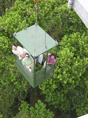 researchers in crane